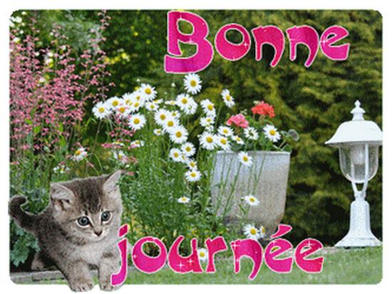 Bonjour, bonsoir..... - Page 5 10946510
