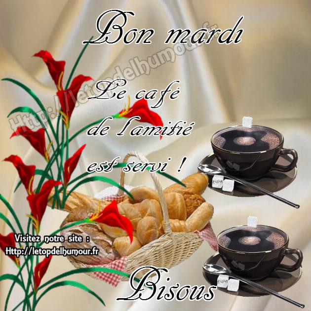 Bonjour, bonsoir..... 10954710