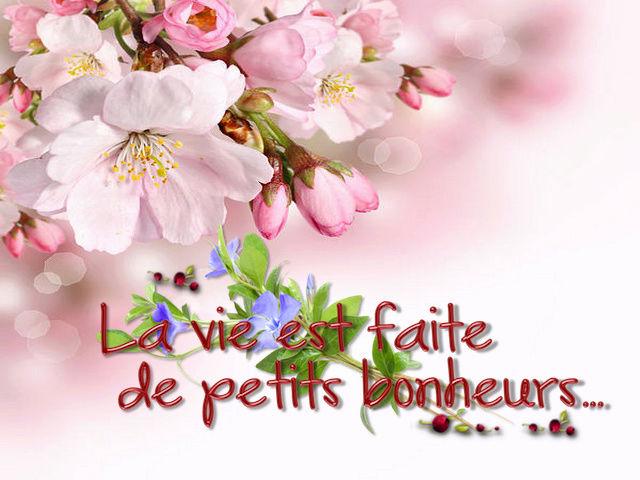 Bonjour, bonsoir..... - Page 2 10974110