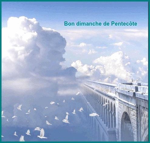 Bonjour, bonsoir..... - Page 2 Bee58610
