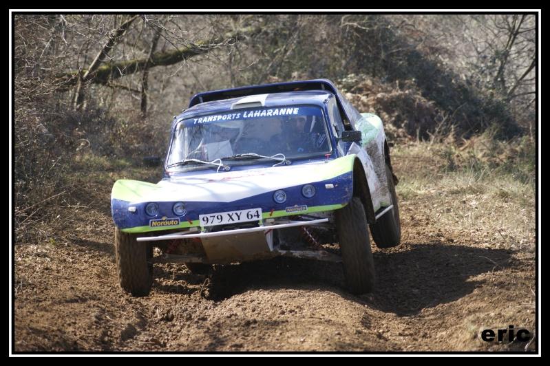 Photos n°115 buggy bleu/blanc/vert _dsc4811