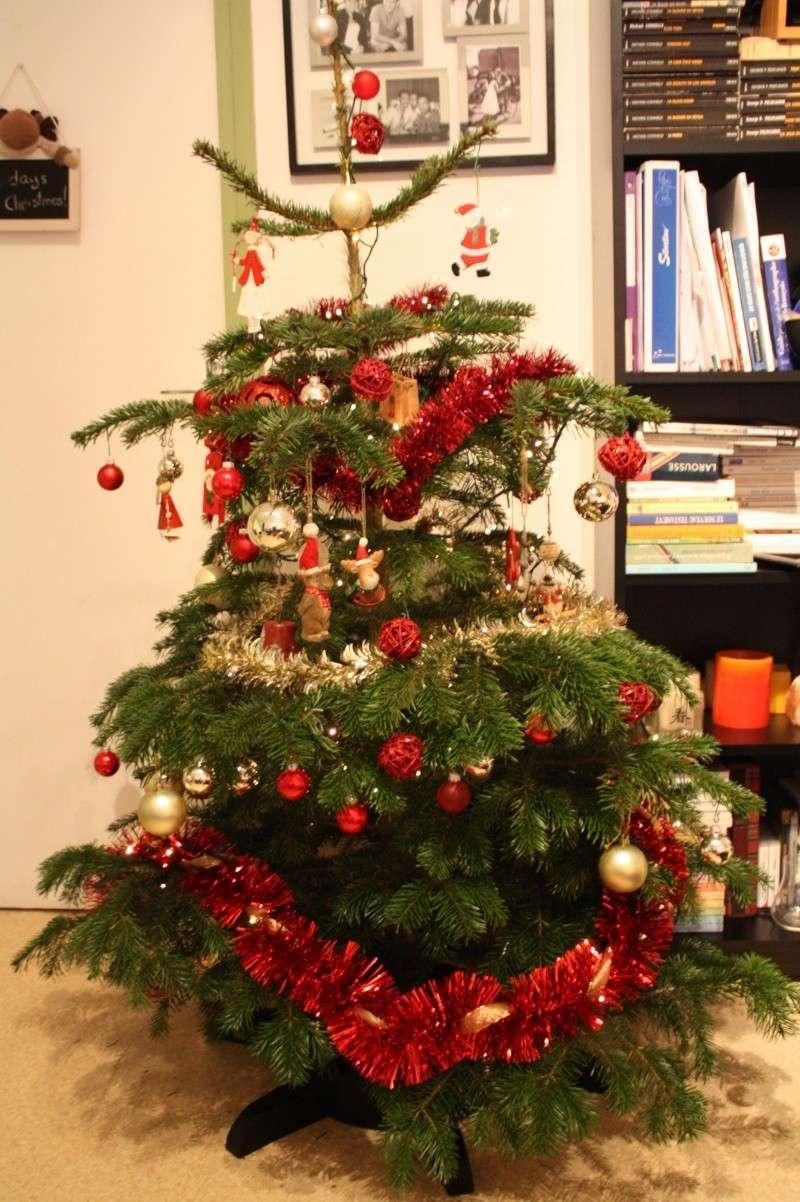 Vos décorations de Noël Img_2911