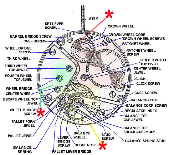 Illustrated guide to watch parts Top_pl10