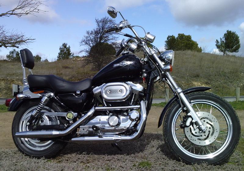 combien sommes nous en 1200 Sportster sur Passion-Harley 80010
