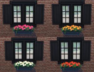 Цветы - Страница 4 Uten_372
