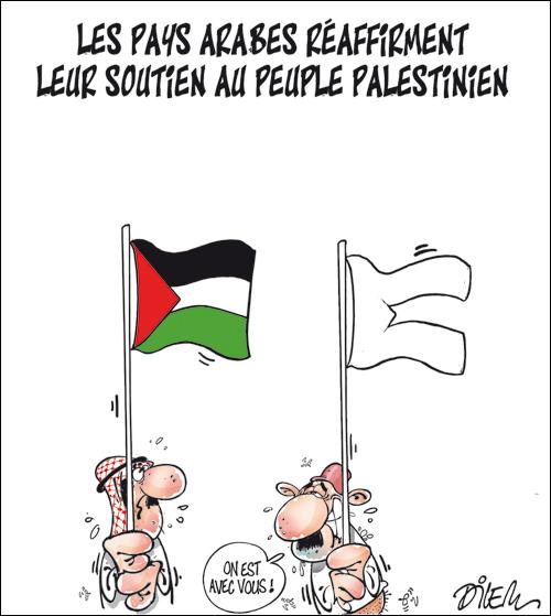 Génocide à Gaza - Page 10 Dilem_12