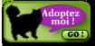 "FIGOLU rebaptisé ""PEPITO"" mâle blanc et noir de 1 an Adopte10"