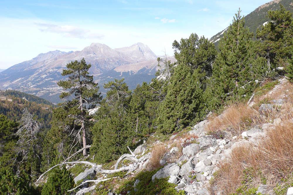 Une visite au Mont Baldo 02/11/17 110