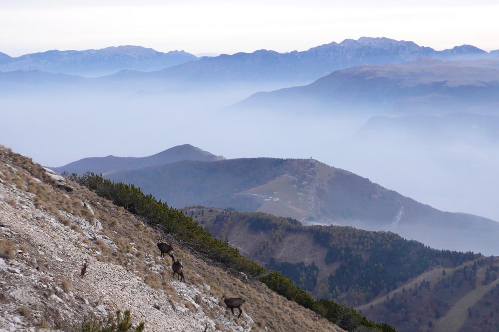 Une visite au Mont Baldo 02/11/17 810