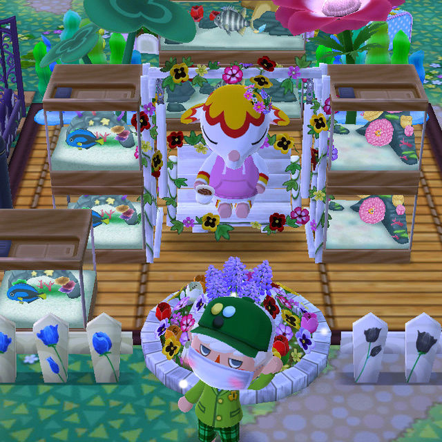 Animal Crossing Pocket Camp-Momente Angelt12