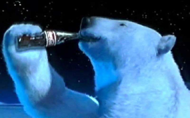 Arme pour protection contre ours polaire à Iqaluit 70984b10