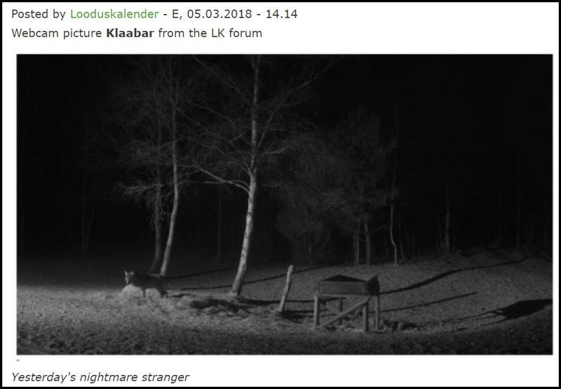 Red Deer Cam (Saarema Island)  - Page 33 2018-012