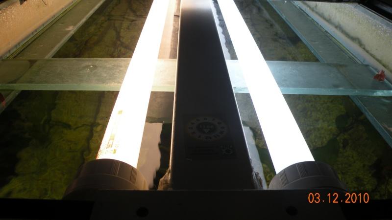 Conseil d'éclairage pour un 450 litres Dscn8125