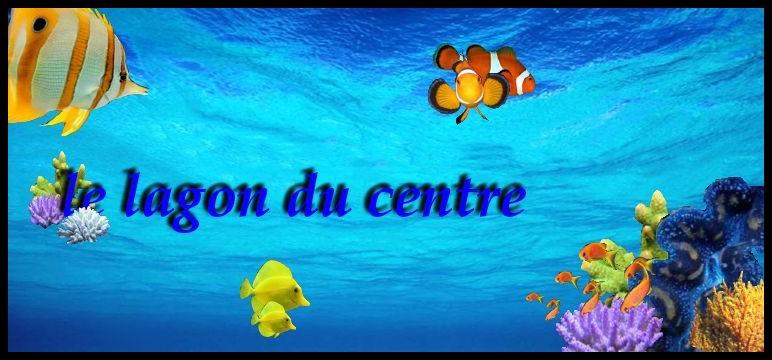 Lagon du centre, le forum récifaliste de la région centre Bonne_12