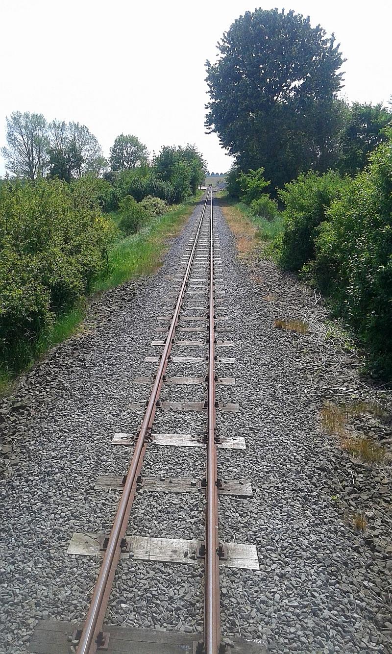 """Schmalspurbahn """"De lütt Kaffeebrenner"""" in Klütz (Mecklenburg-Vorpommern) 3310"""
