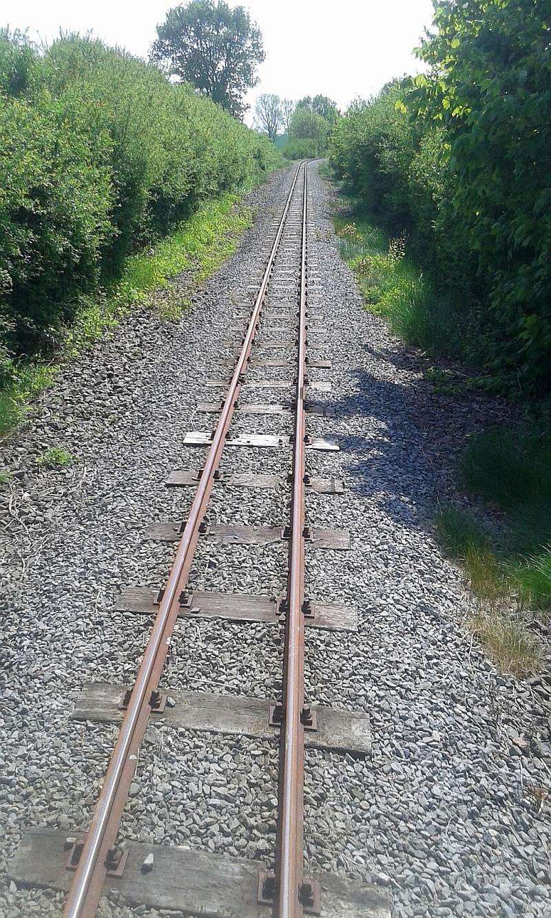 """Schmalspurbahn """"De lütt Kaffeebrenner"""" in Klütz (Mecklenburg-Vorpommern) 3410"""