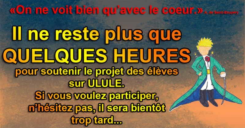 Aidez les enfants à concrétiser leur projet - Page 3 Quelqu10