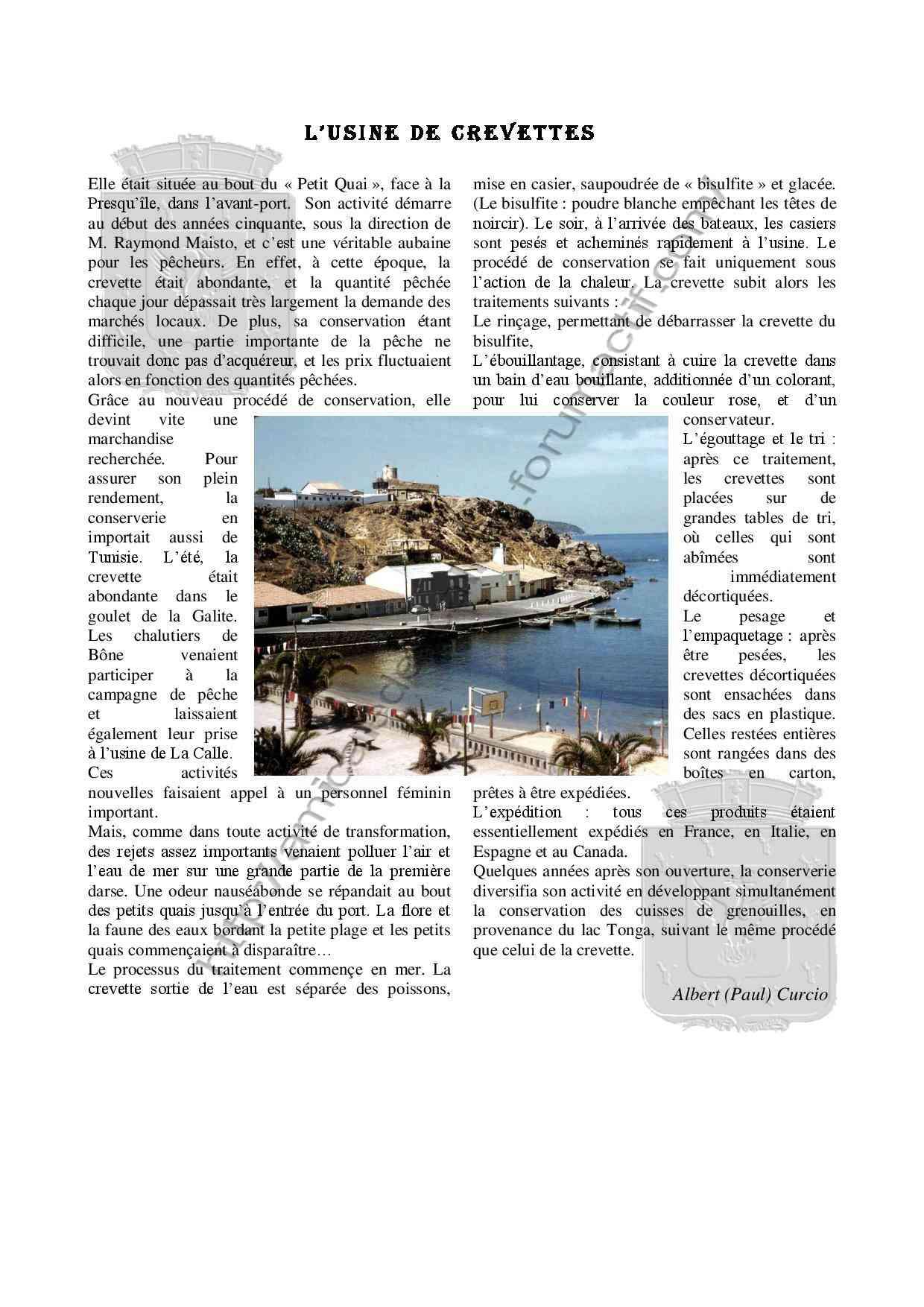 L usine de crevettes -Vie économique- Albert Curcio -Livre-  Livre_11