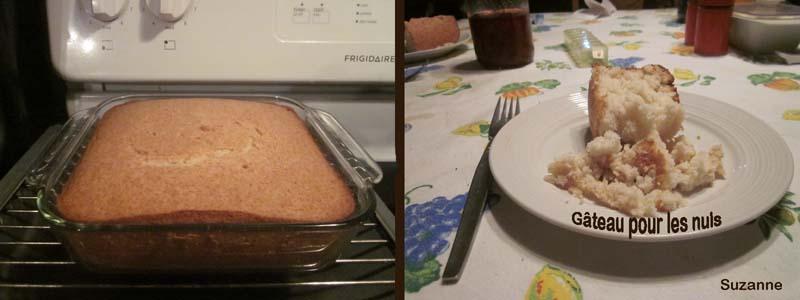 Gâteau pour les nuls Gyteau10