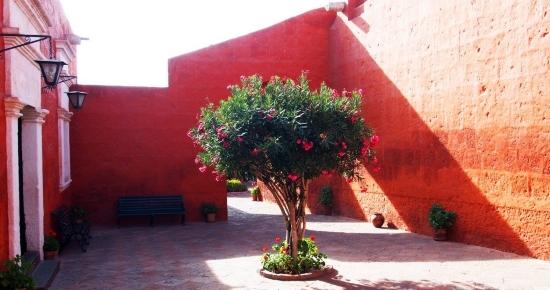 LE COUVENT DE SANTA CATALINA (Pérou) Whatsi10