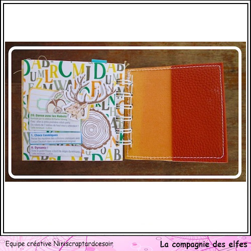 Mini album au Futuroscope  F1111