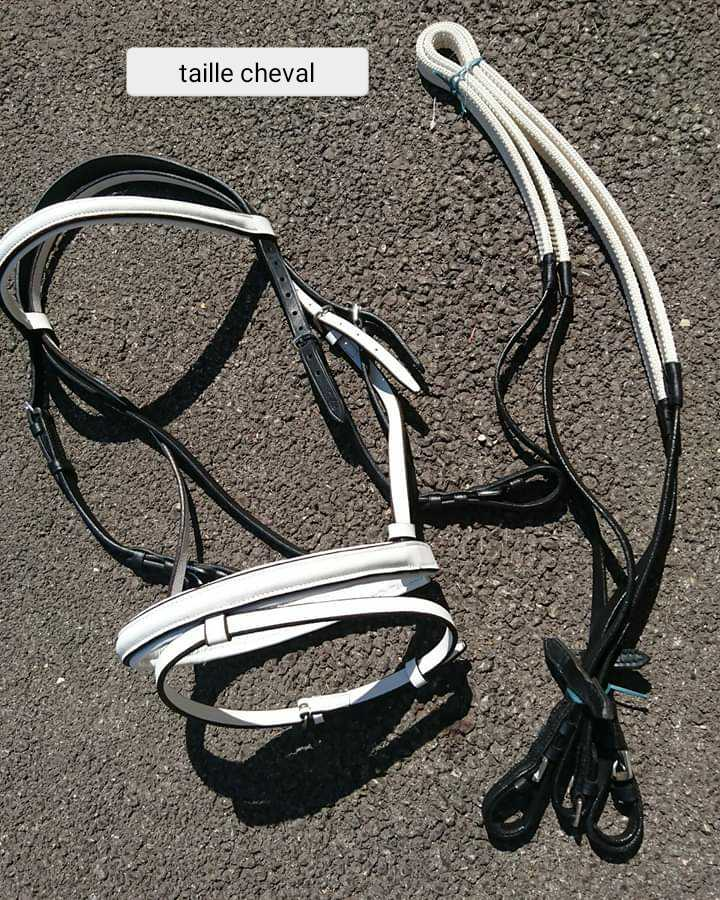 Porte selle sur roues, fil de cloture, piquets neufs, gilet de protection, surfaix, Sangles...  Photo_14