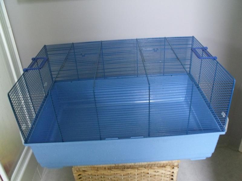 donne cage Dscf7914