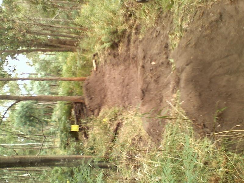 trails. 02141010