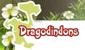 Dragodindons Dragod10