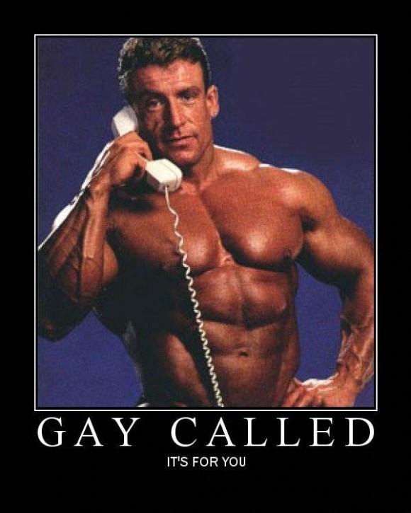 mtb Mp-gay10