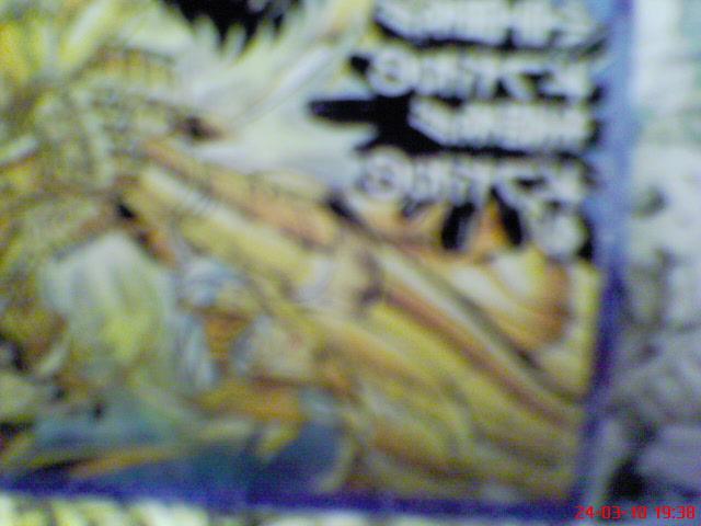 [Luglio 2010]God Cloth Cygnus Hyoga - Pagina 2 Abcd0011