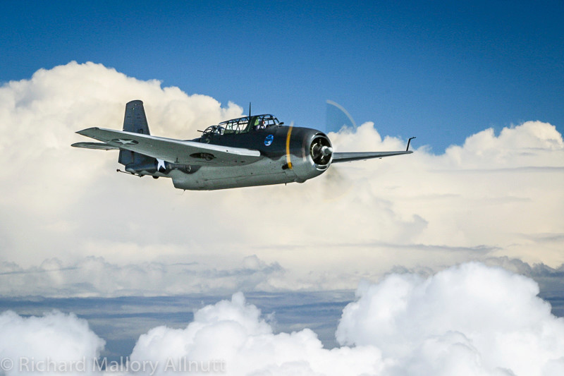 Dogfights. - Page 6 Img_8910