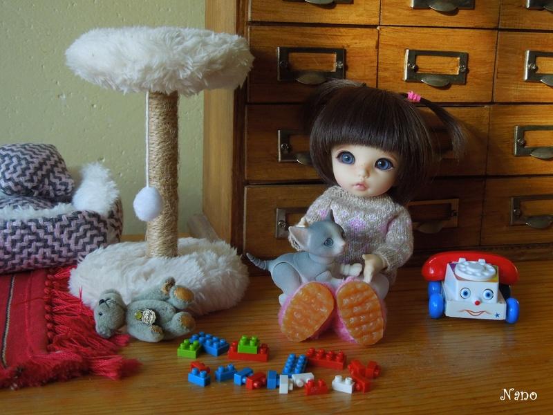 Ma petite famille de BJD (Souldoll, Fairyland, Raccoon doll) - Page 12 Dscn7012