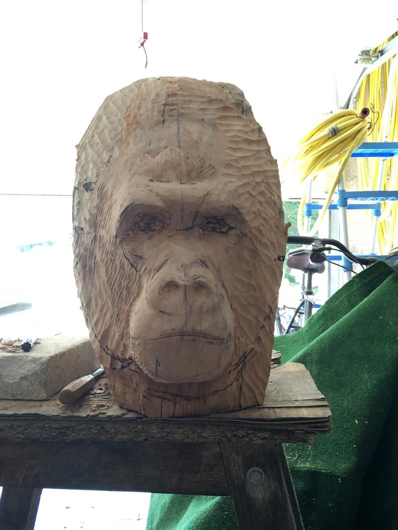 tête de singe Img_2227