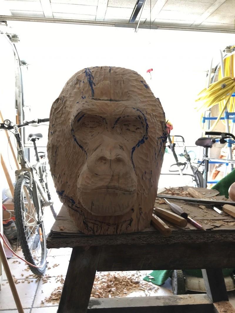 tête de singe Img_2230