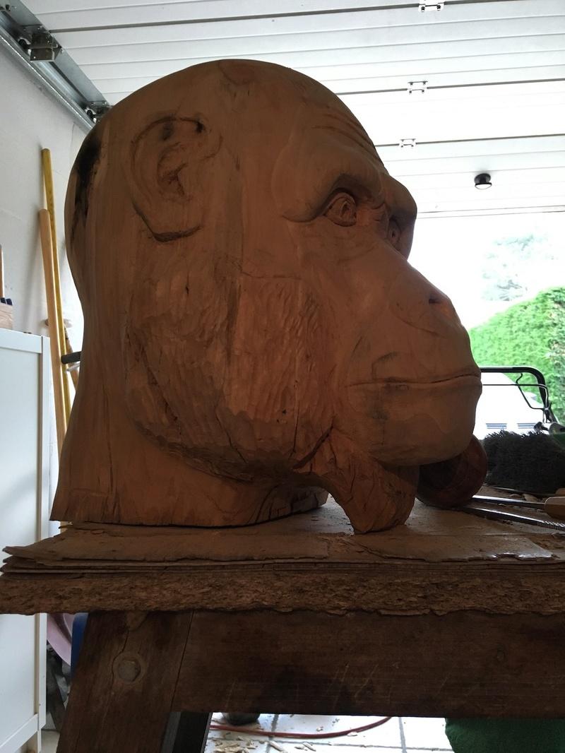 tête de singe Img_2312
