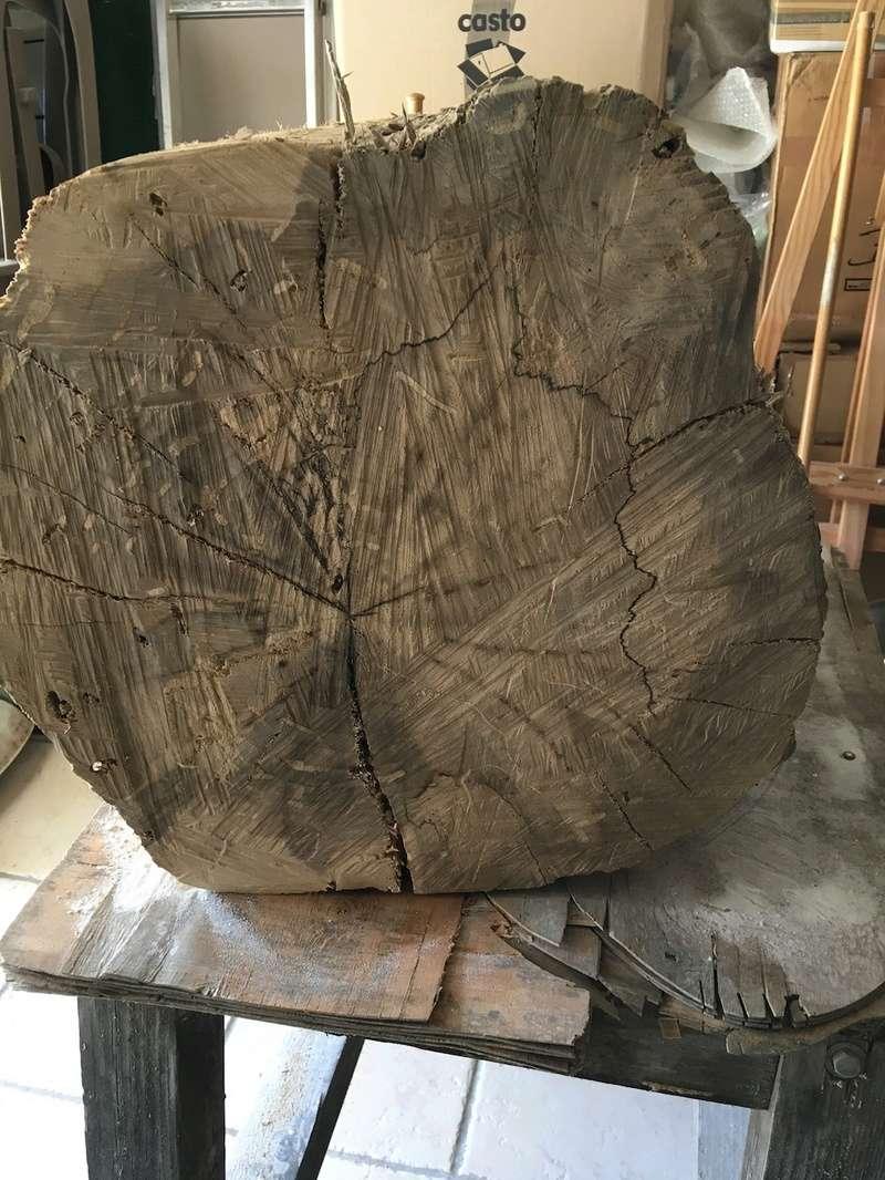 Mon nouveau morceau de bois Img_2511