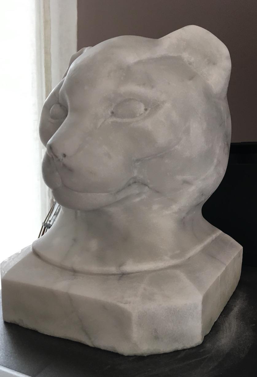 Tête de chat Img_2627