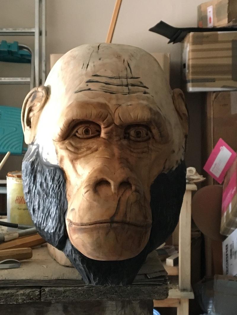 tête de singe Img_6810