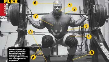 Nuts and Bolts of the Squat Squat10