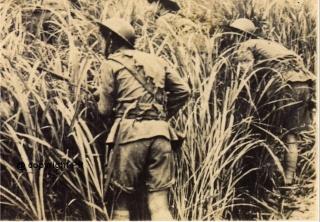 Le 22ème Régiment d'Infanterie Coloniale Image911