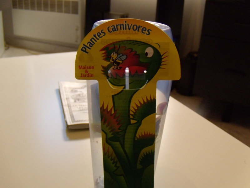 The Carrefour Dionaea Style!! Dscn1914