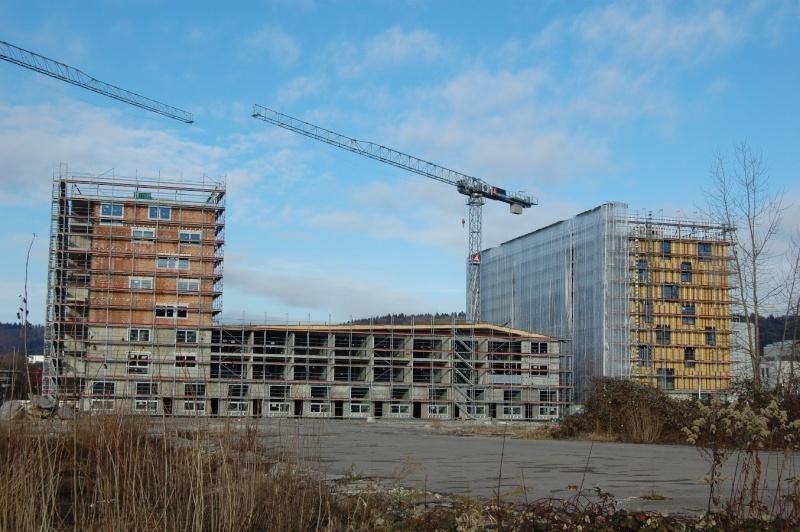 chantiers suisse Potain33