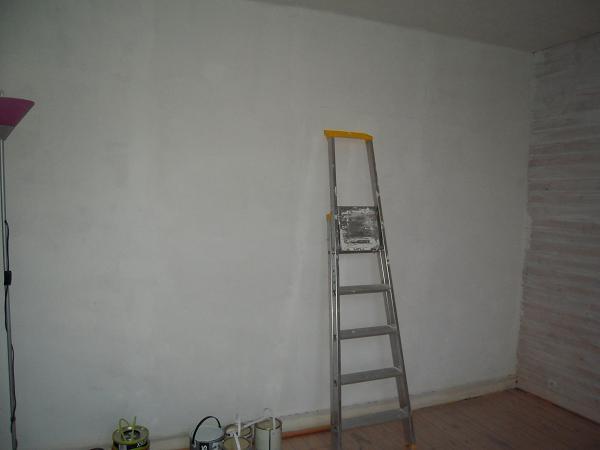 Lambris à peindre , 2 couleurs ?? 4_cham11