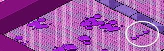 [IT] Evento Color Run | Gioco Sfida del Viola #5 Scher231