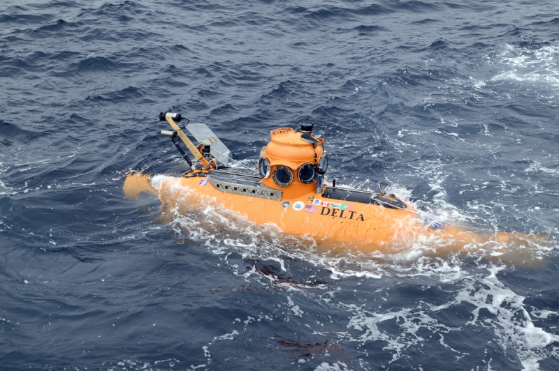 Delta submersible 32565810