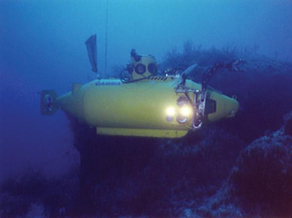 Delta submersible 412310