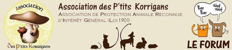 Forum de l'Association des P'tits Korrigans