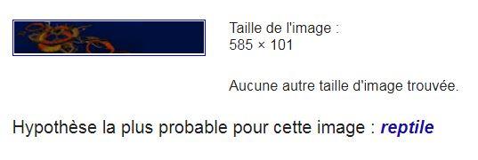 Reconnaissance d'image de Google Captur25