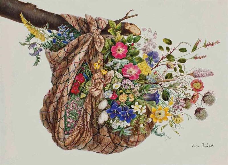 Joyeux Anniversaire maluneamoi Fleurs12